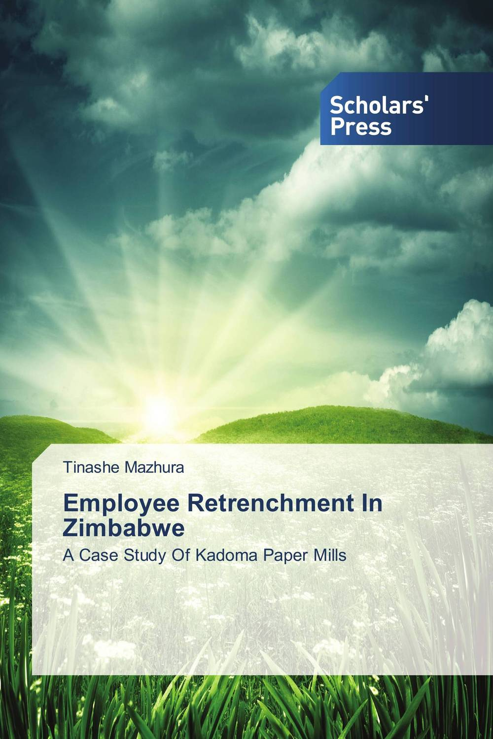 Employee Retrenchment In Zimbabwe corporate real estate management in tanzania