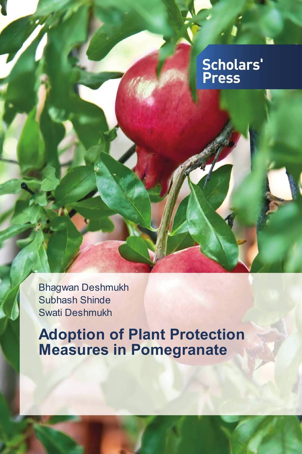 Adoption of Plant Protection Measures in Pomegranate the salmon who dared to leap higher