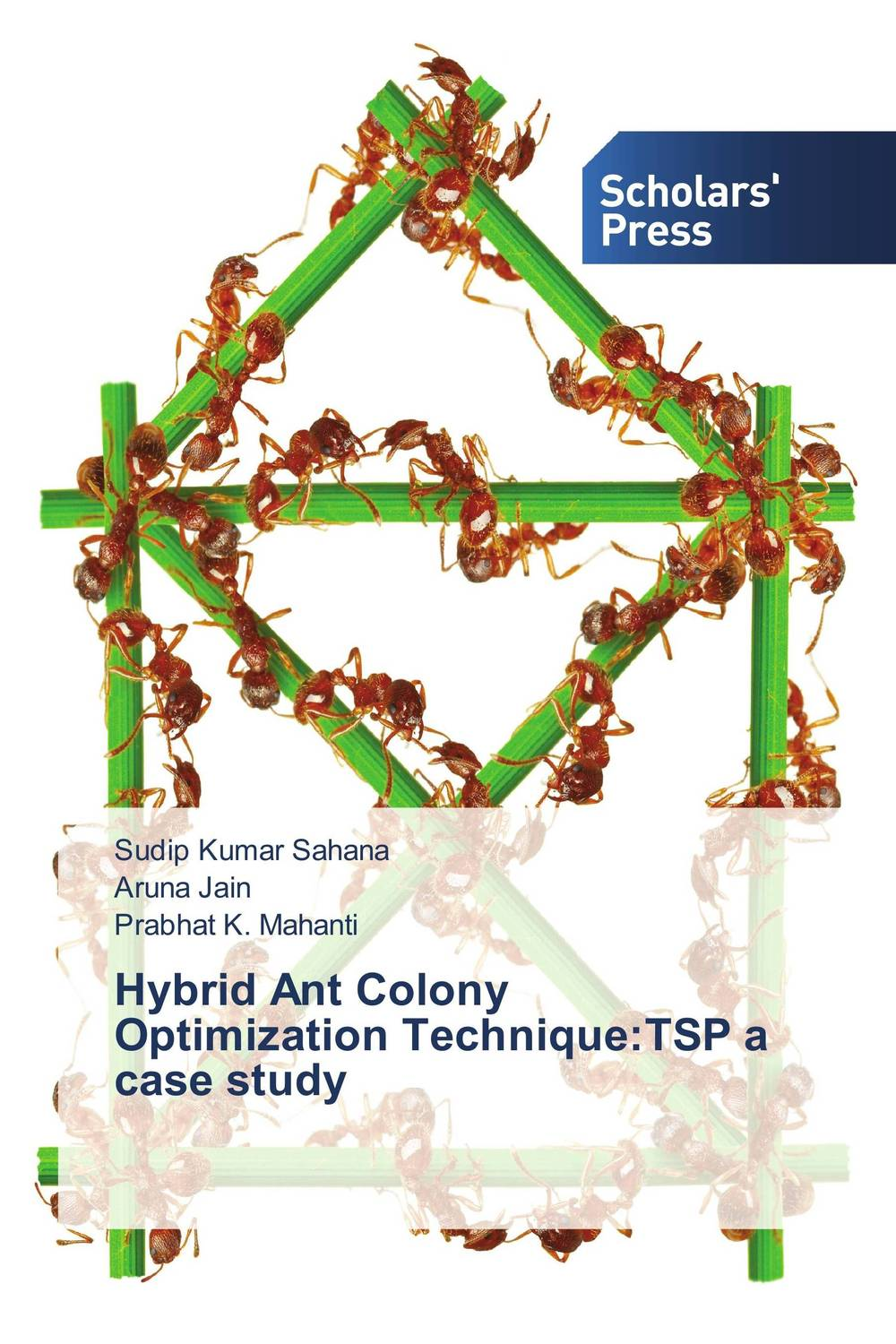 Hybrid Ant Colony Optimization Technique:TSP a case study practical global optimization computing methods in molecular modelling