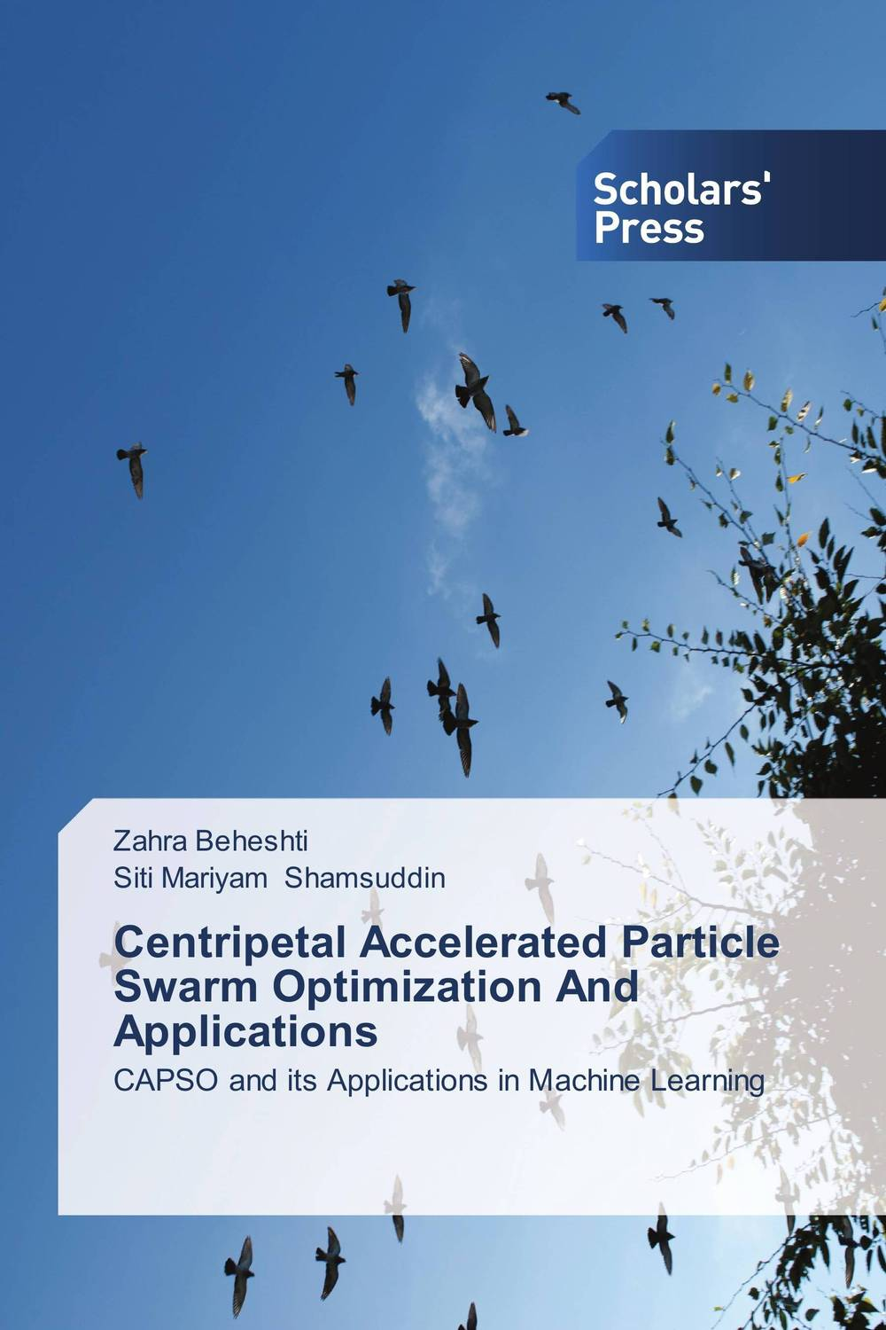 Centripetal Accelerated Particle Swarm Optimization And Applications bruce clay search engine optimization all in one for dummies