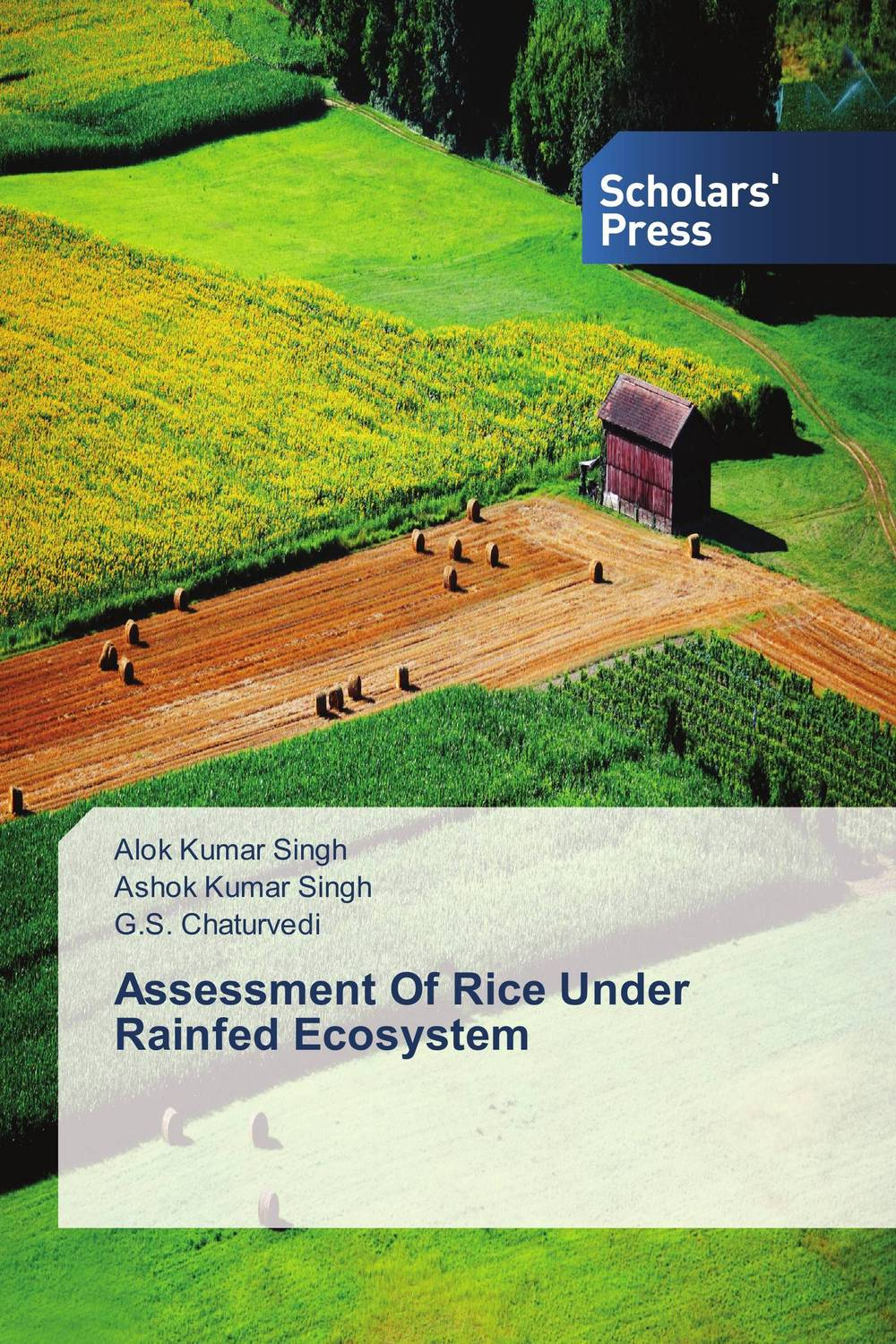 Assessment Of Rice Under Rainfed Ecosystem