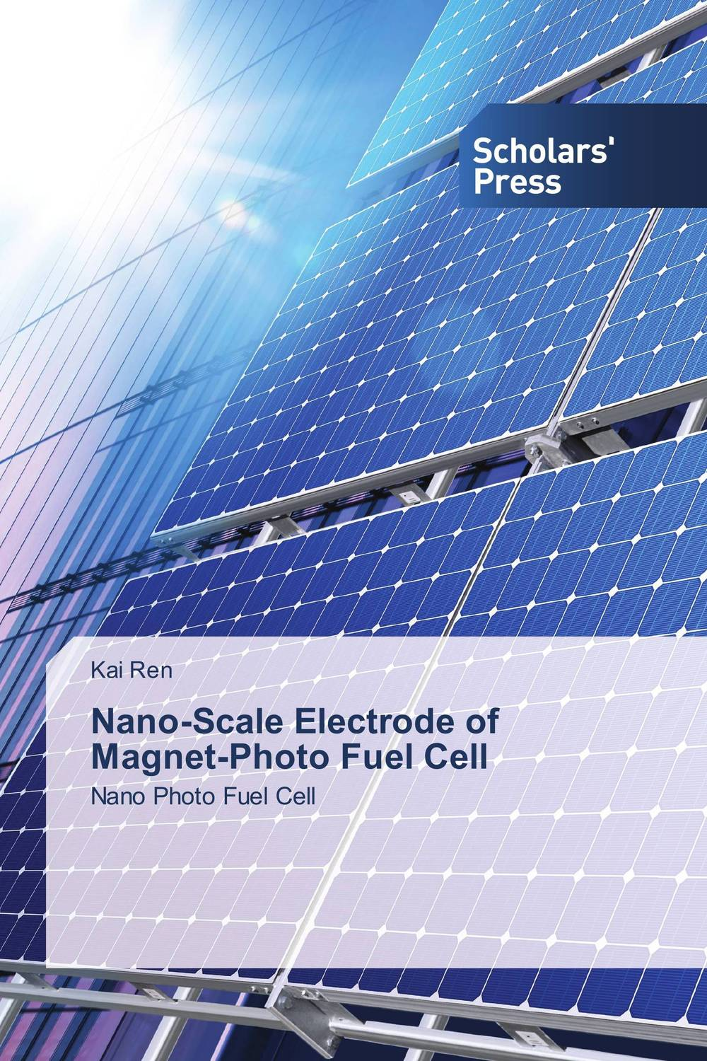 Nano-Scale Electrode of Magnet-Photo Fuel Cell lacalle daniel the energy world is flat