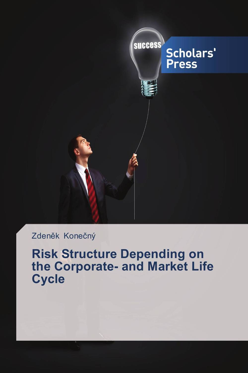 Risk Structure Depending on the Corporate- and Market Life Cycle christian szylar handbook of market risk