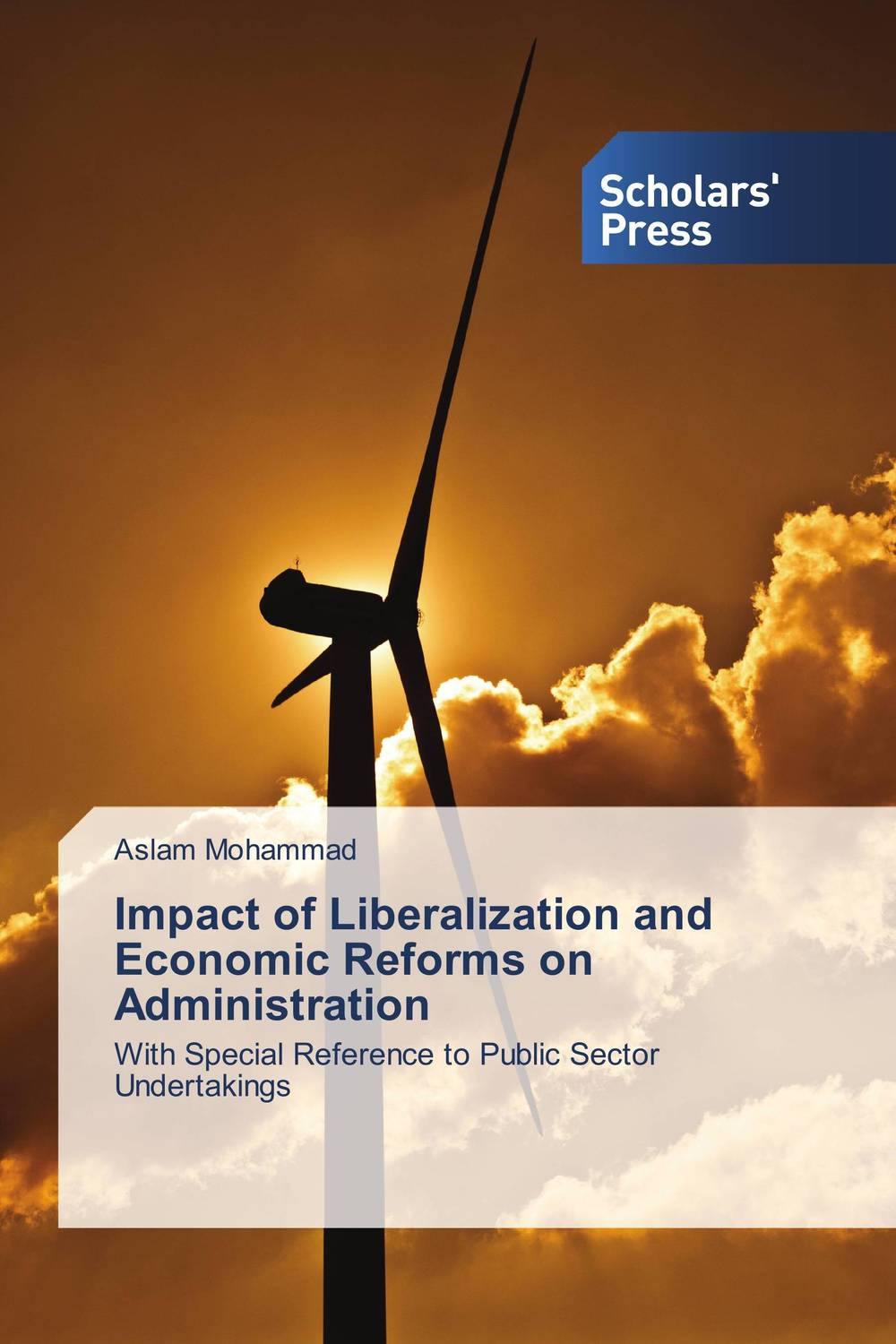 Impact of Liberalization and Economic Reforms on Administration economic methodology