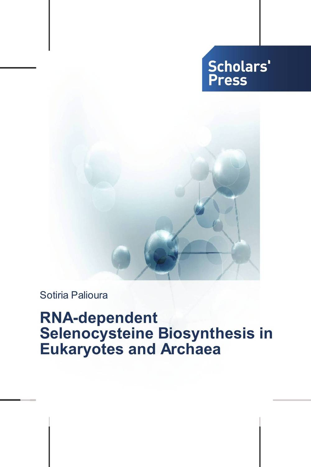 RNA-dependent Selenocysteine Biosynthesis in Eukaryotes and Archaea the role of evaluation as a mechanism for advancing principal practice