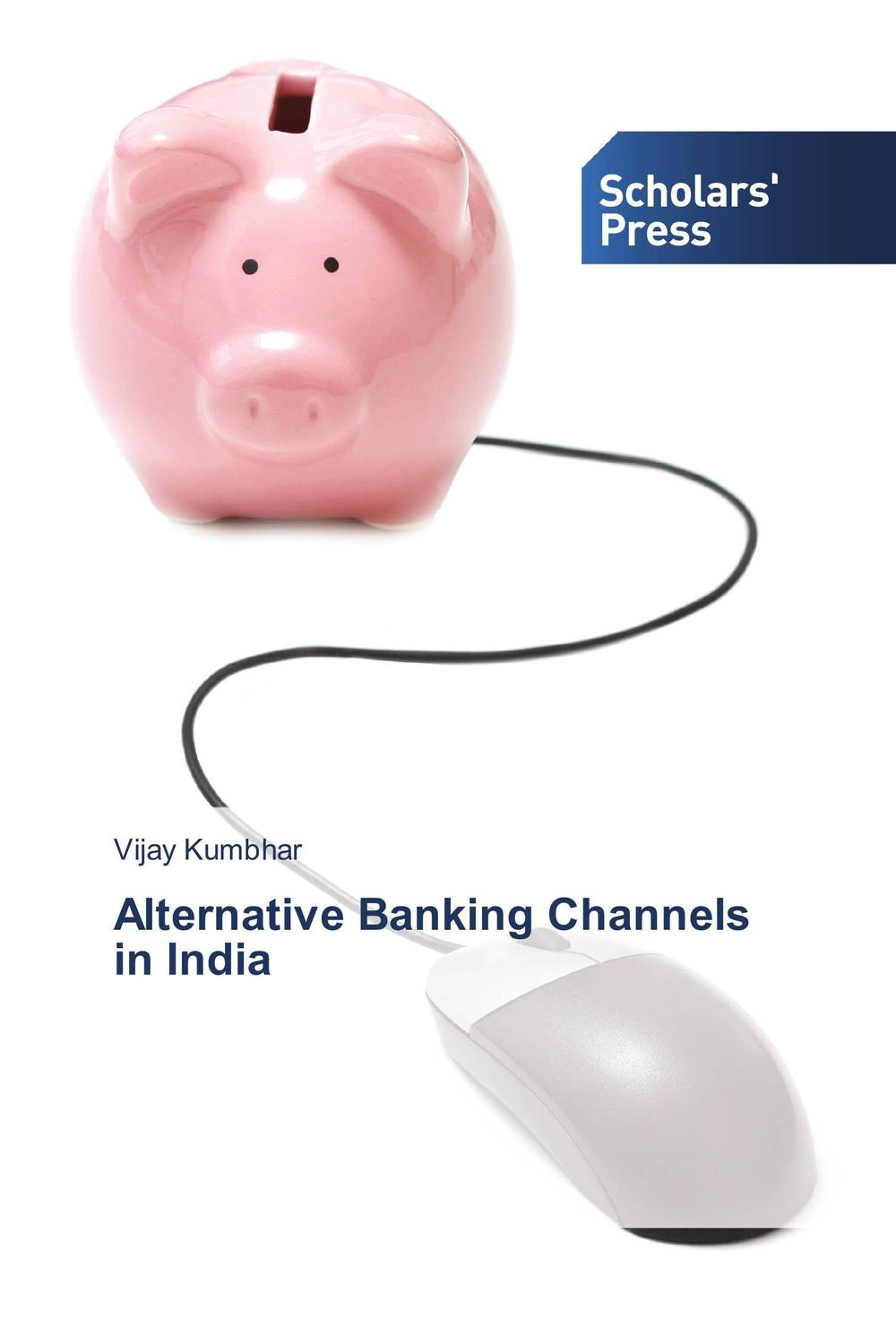 Alternative Banking Channels in India micro finance in india