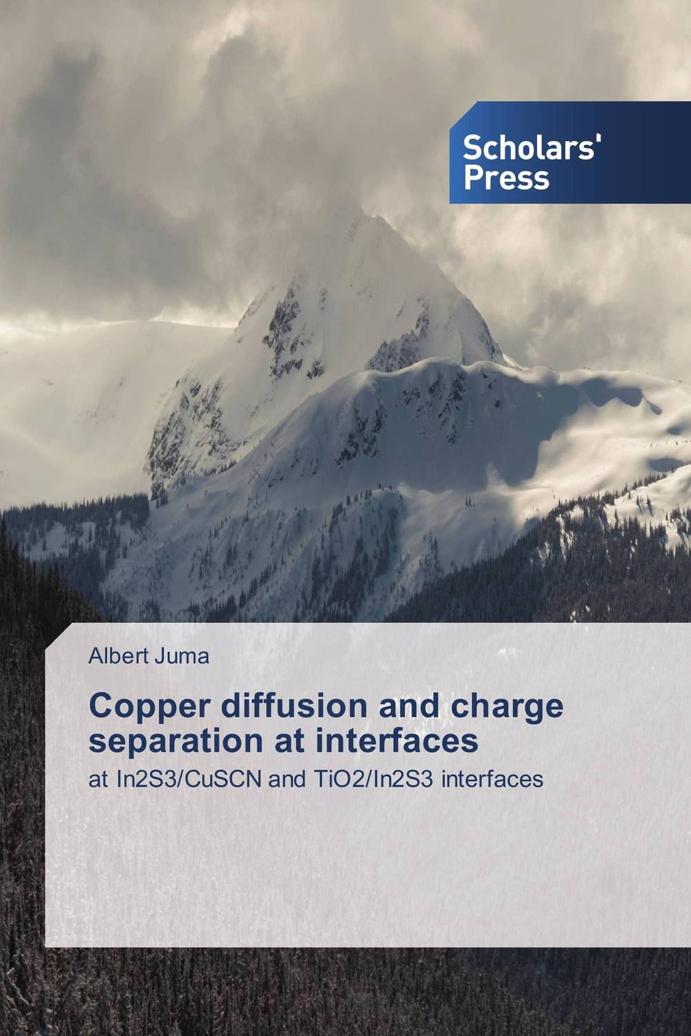 Copper diffusion and charge separation at interfaces ligia gheorghita passivation kinetics at semiconductor interfaces