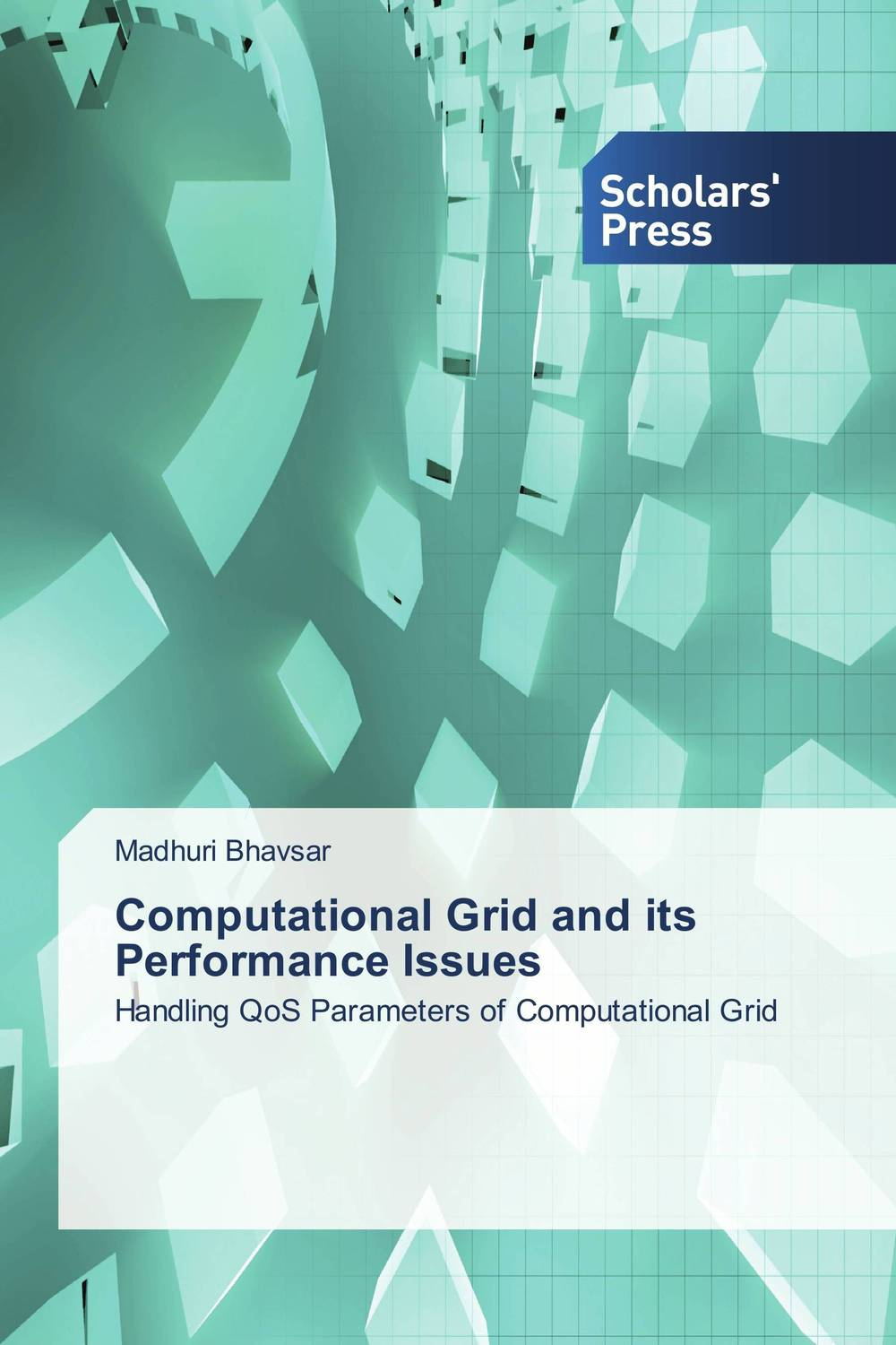 Computational Grid and its Performance Issues