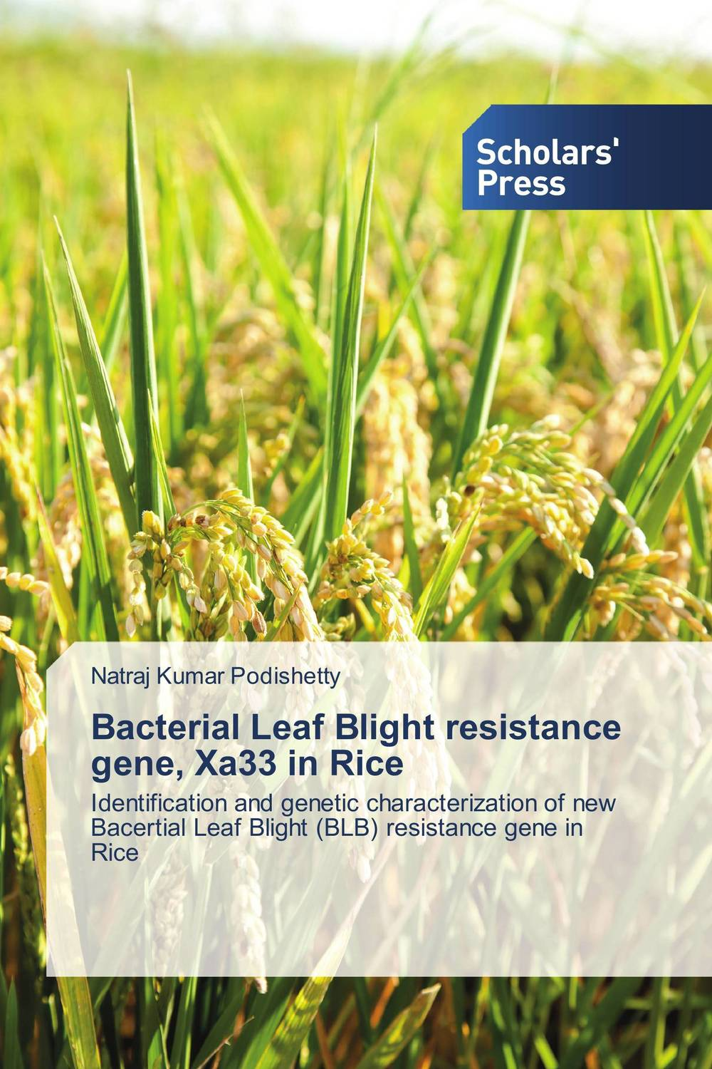 Bacterial Leaf Blight resistance gene, Xa33 in Rice polymorphisms at candidate genes for disease resistance in chicken
