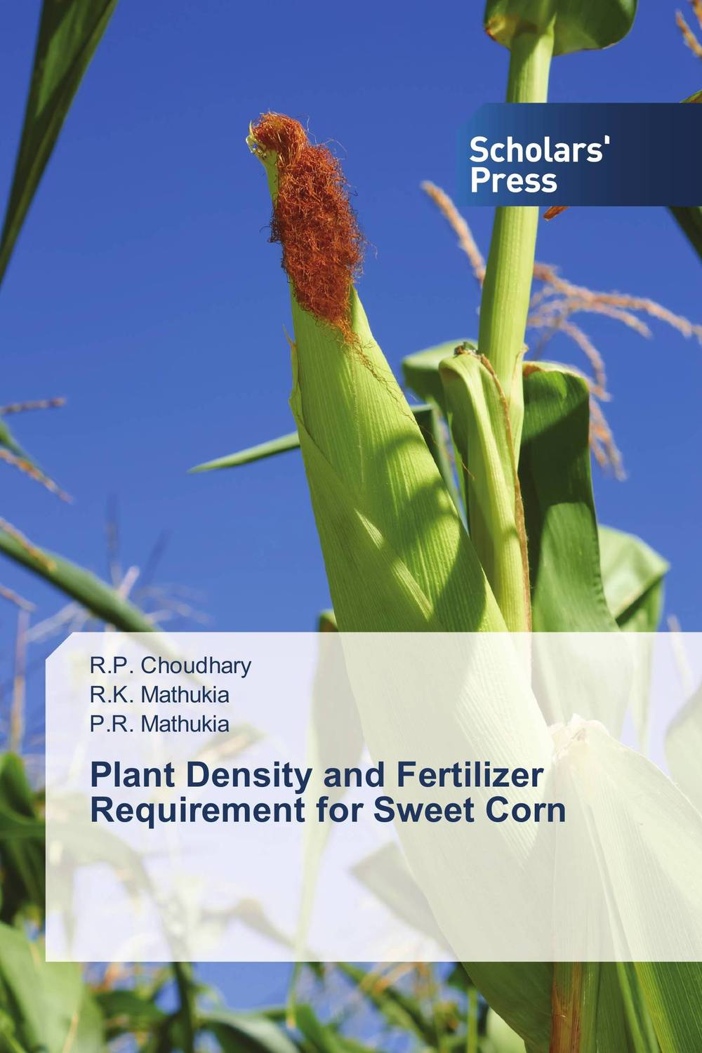 Plant Density and Fertilizer Requirement for Sweet Corn katy perry copenhagen