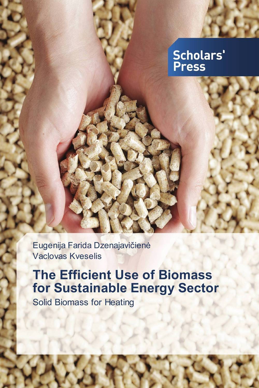 The Efficient Use of Biomass for Sustainable Energy Sector oil prices energy security and import policy