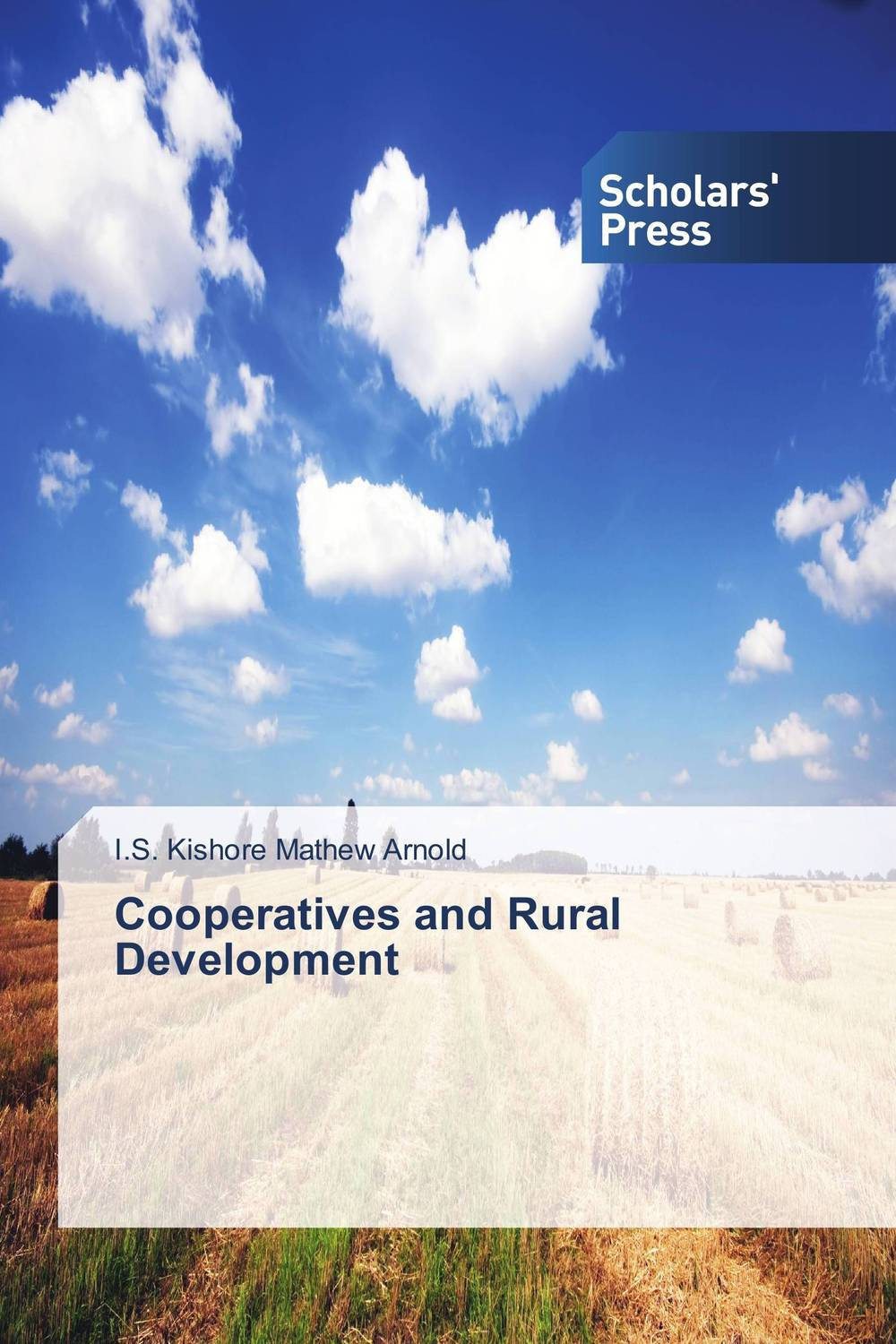 Cooperatives and Rural Development lawrence maumbi michelo analysis of nongovernmental organisation in rural development