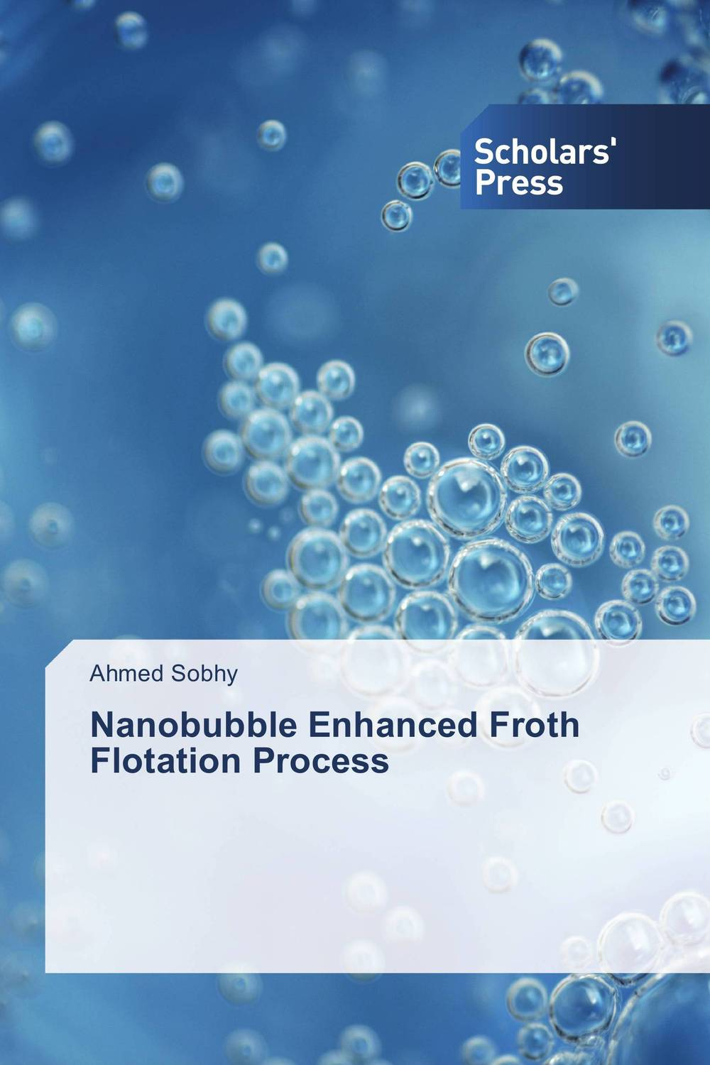Nanobubble Enhanced Froth Flotation Process