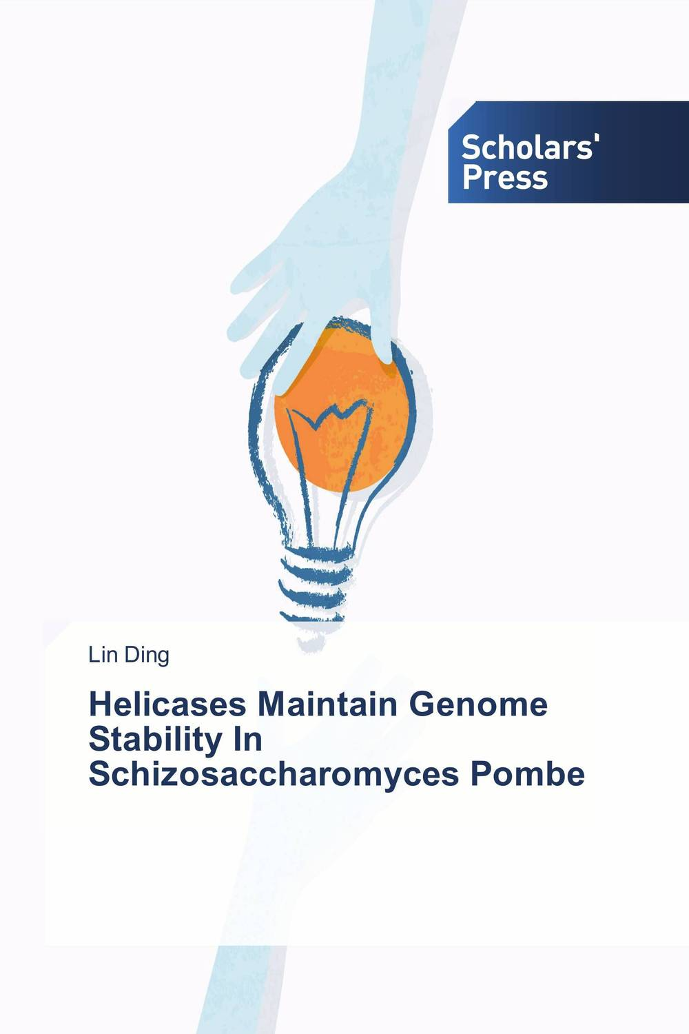 Helicases Maintain Genome Stability In Schizosaccharomyces Pombe interplay between dna replication and repair