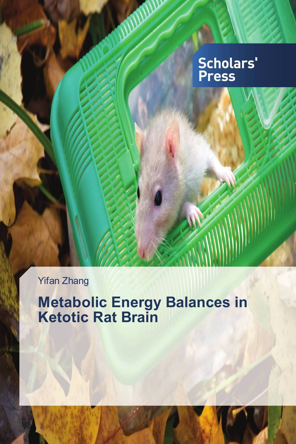 Metabolic Energy Balances in Ketotic Rat Brain ben buchanan brain structure and circuitry in body dysmorphic disorder