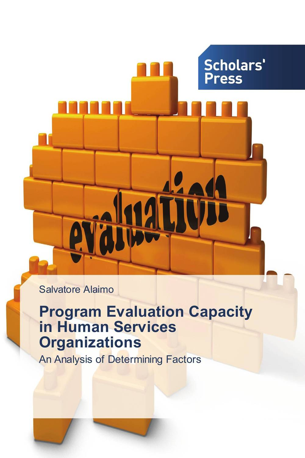 Program Evaluation Capacity in Human Services Organizations evaluation of tuberculosis dot program case detection and management