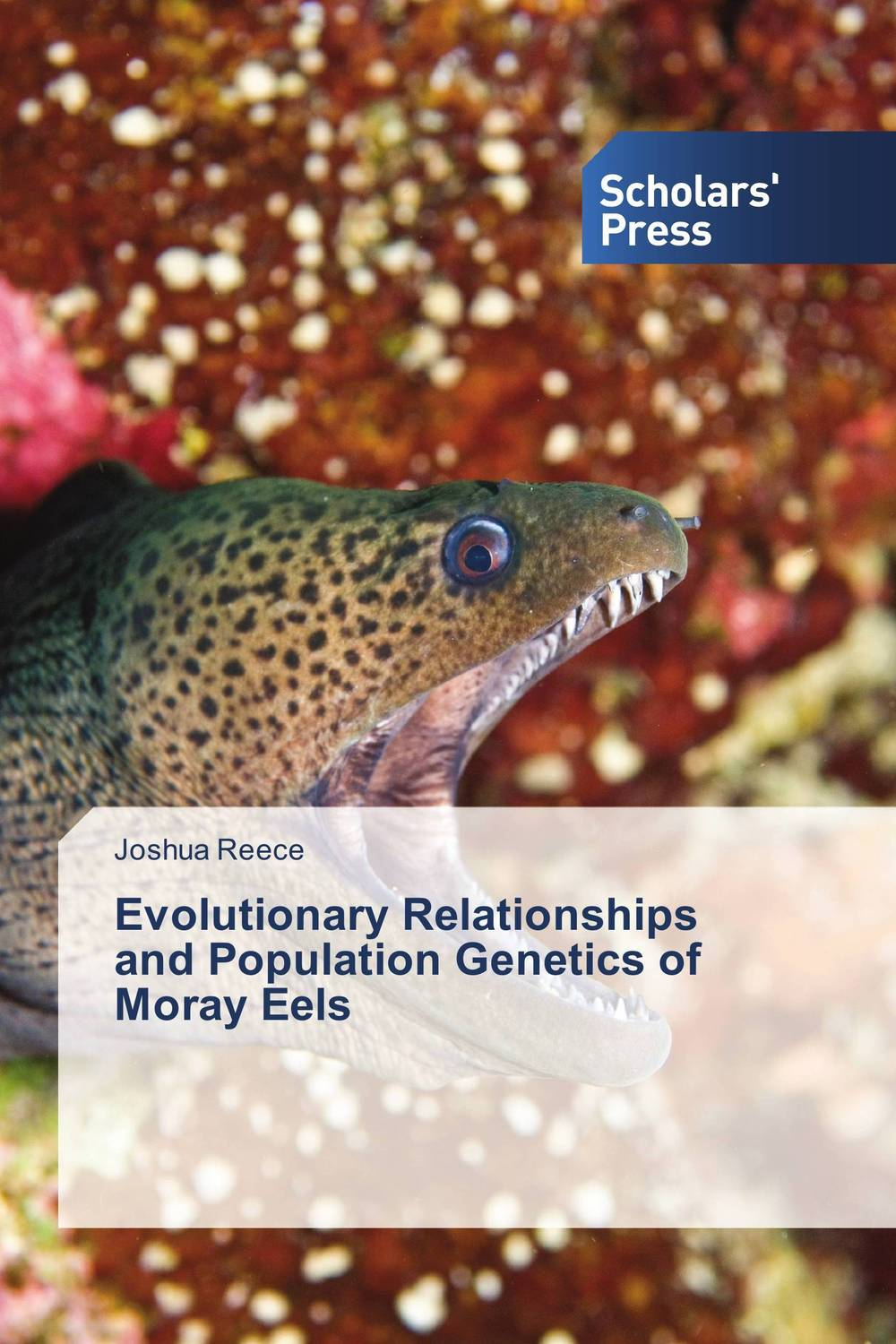 Evolutionary Relationships and Population Genetics of Moray Eels climatology and biogeography