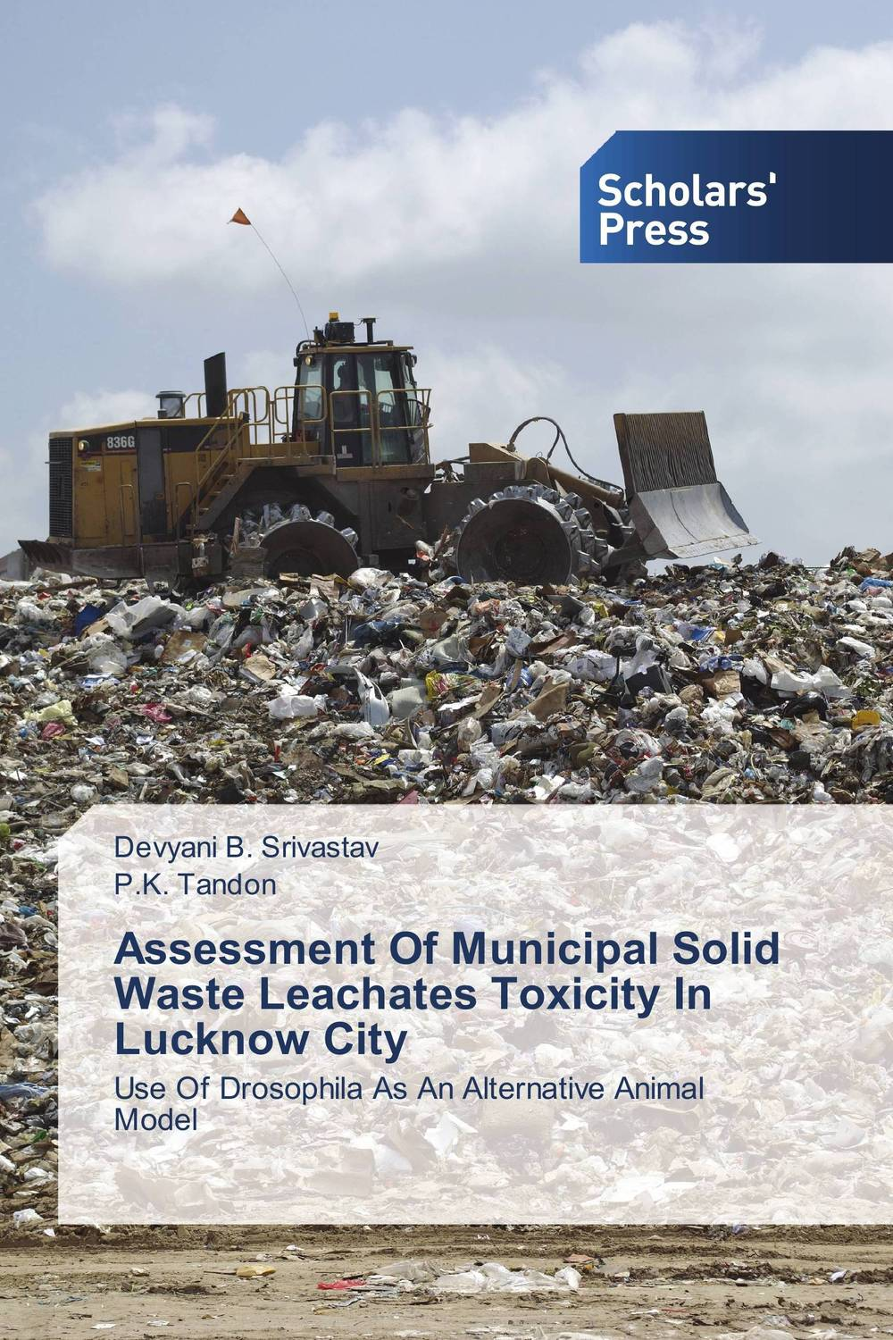 Assessment Of Municipal Solid Waste Leachates Toxicity In Lucknow City chemical studies on toxic effects of cadmium