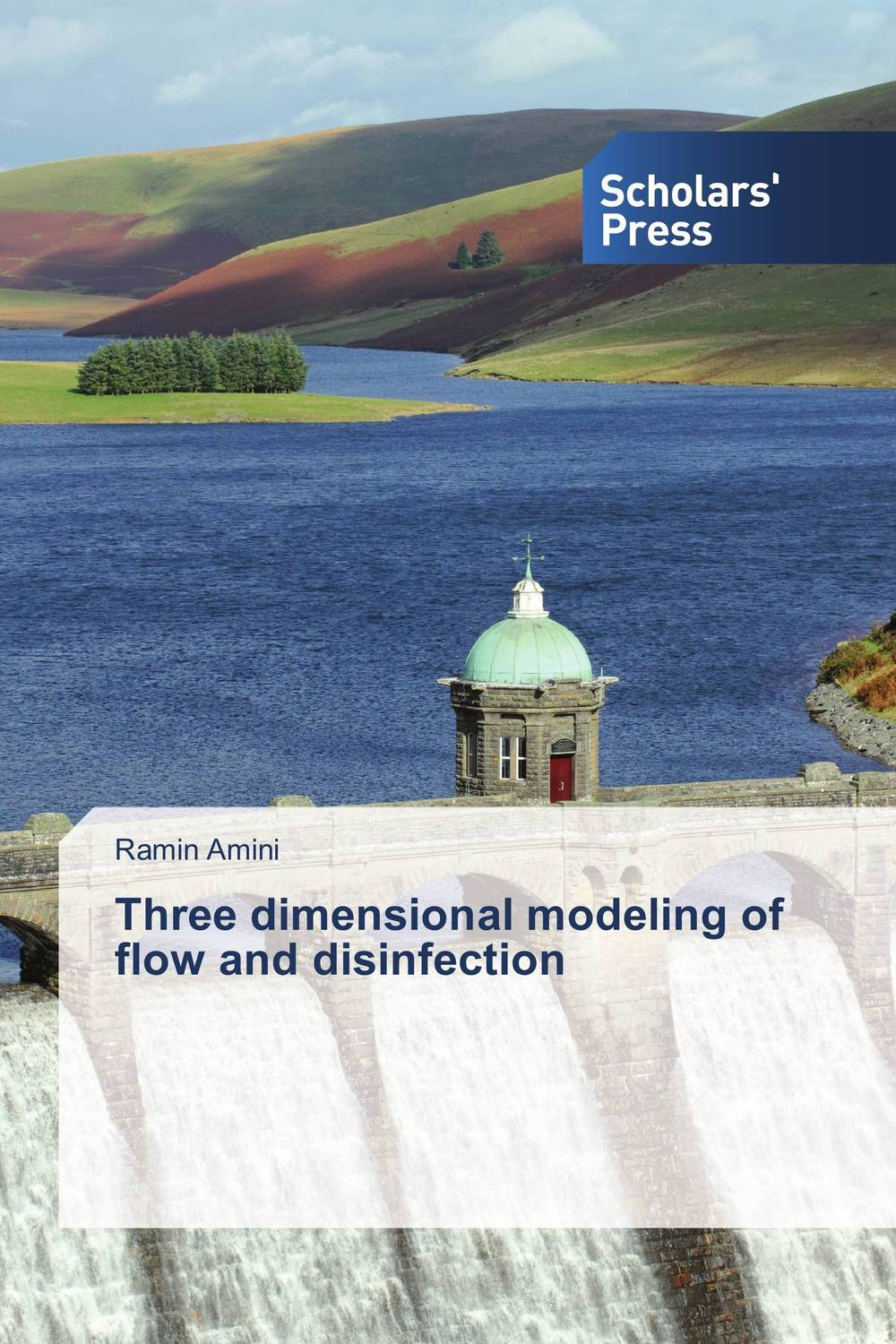 Three dimensional modeling of flow and disinfection bride of the water god v 3