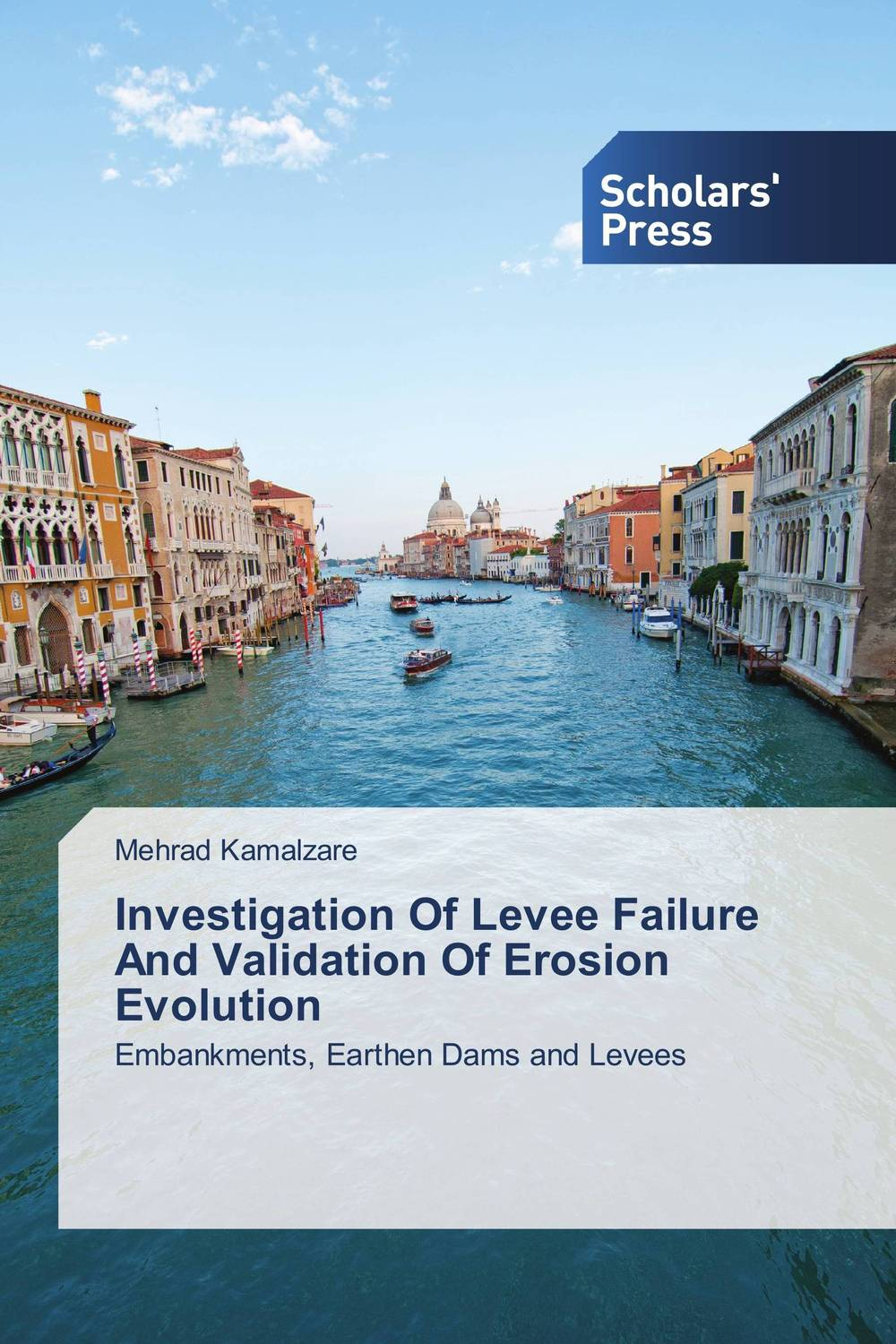 Investigation Of Levee Failure And Validation Of Erosion Evolution evaluation of pile failure mechanism by piv method