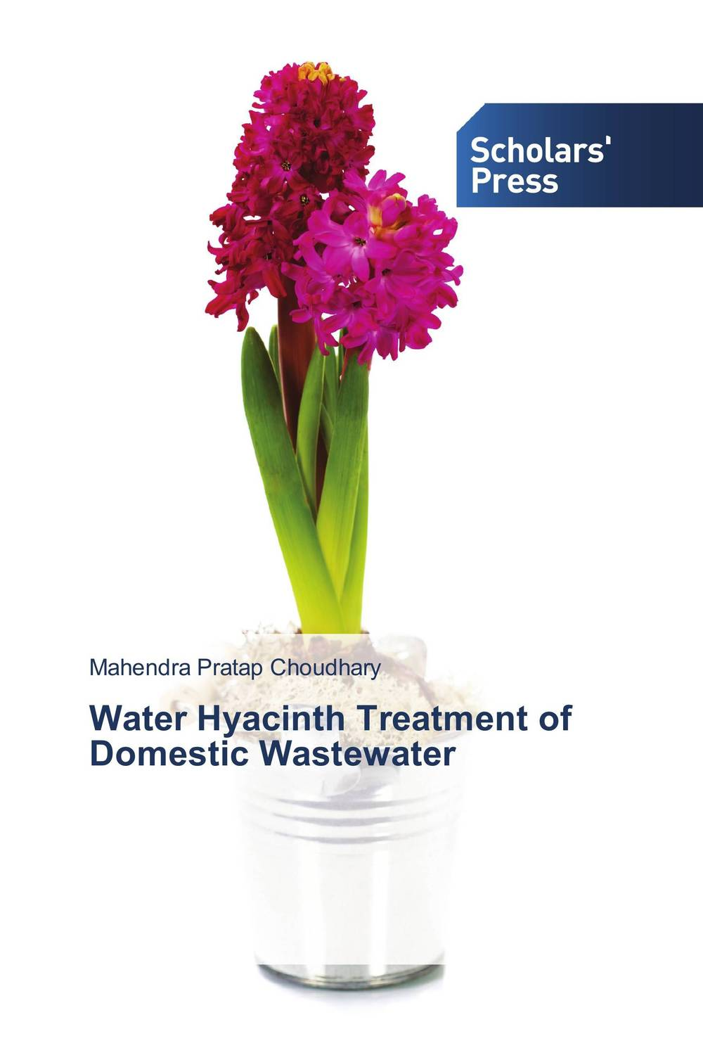 Water Hyacinth Treatment of Domestic Wastewater how to get rid of mans prostatitis then select the prostate massager treatment instrument