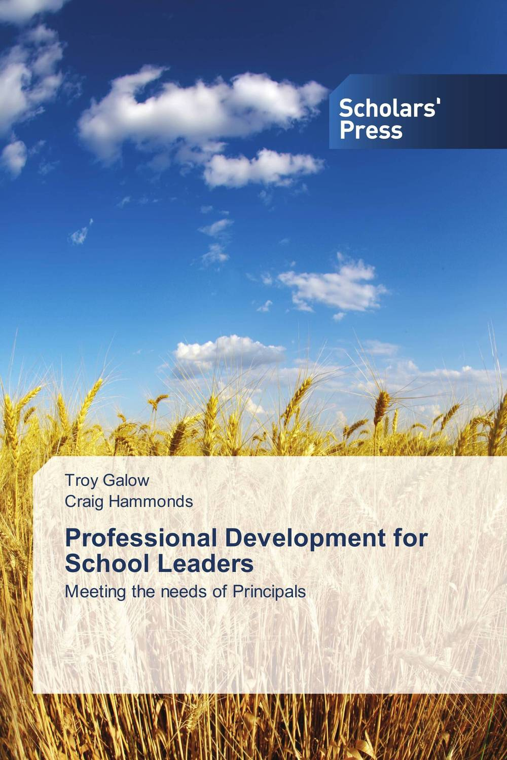 Professional Development for School Leaders the role of evaluation as a mechanism for advancing principal practice