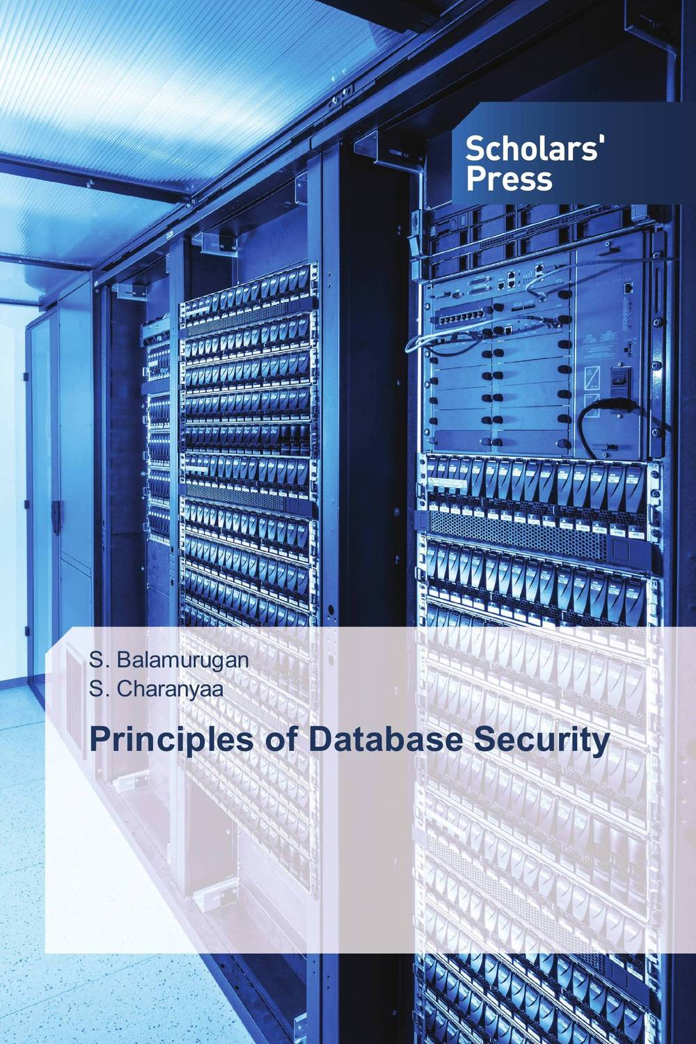 Principles of Database Security modern security methods in applied computer science