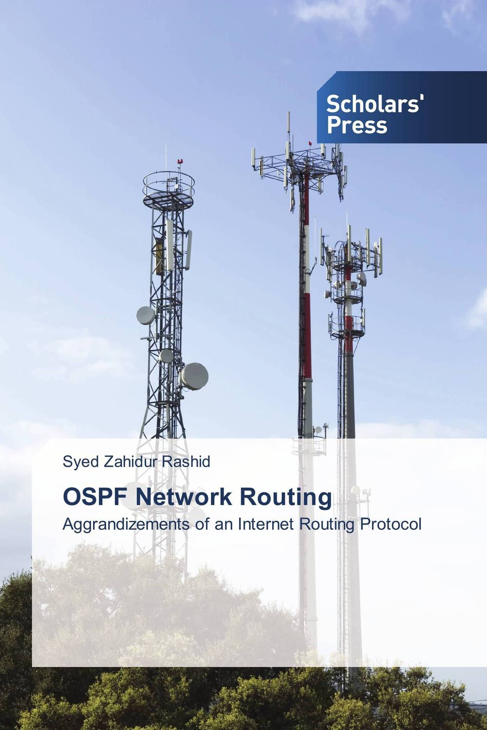OSPF Network Routing syed zahidur rashid ospf network routing