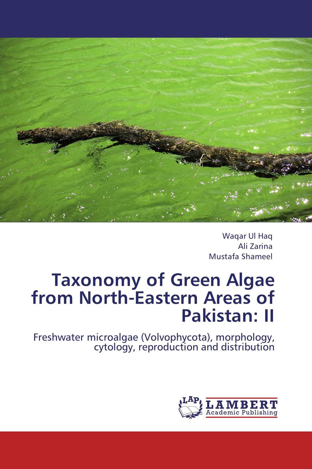 Taxonomy of Green Algae from North-Eastern Areas of Pakistan: II export of carpets from eastern u p