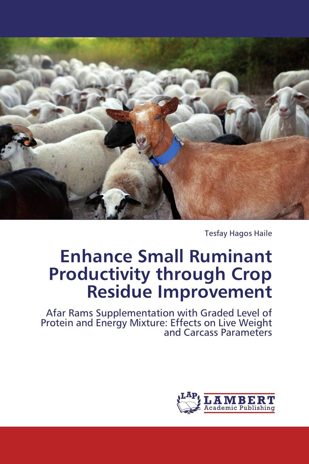 Enhance Small Ruminant Productivity through Crop Residue Improvement amare matebu daniel kitaw and carlo rafele productivity improvement in ethiopian manufacturing firms