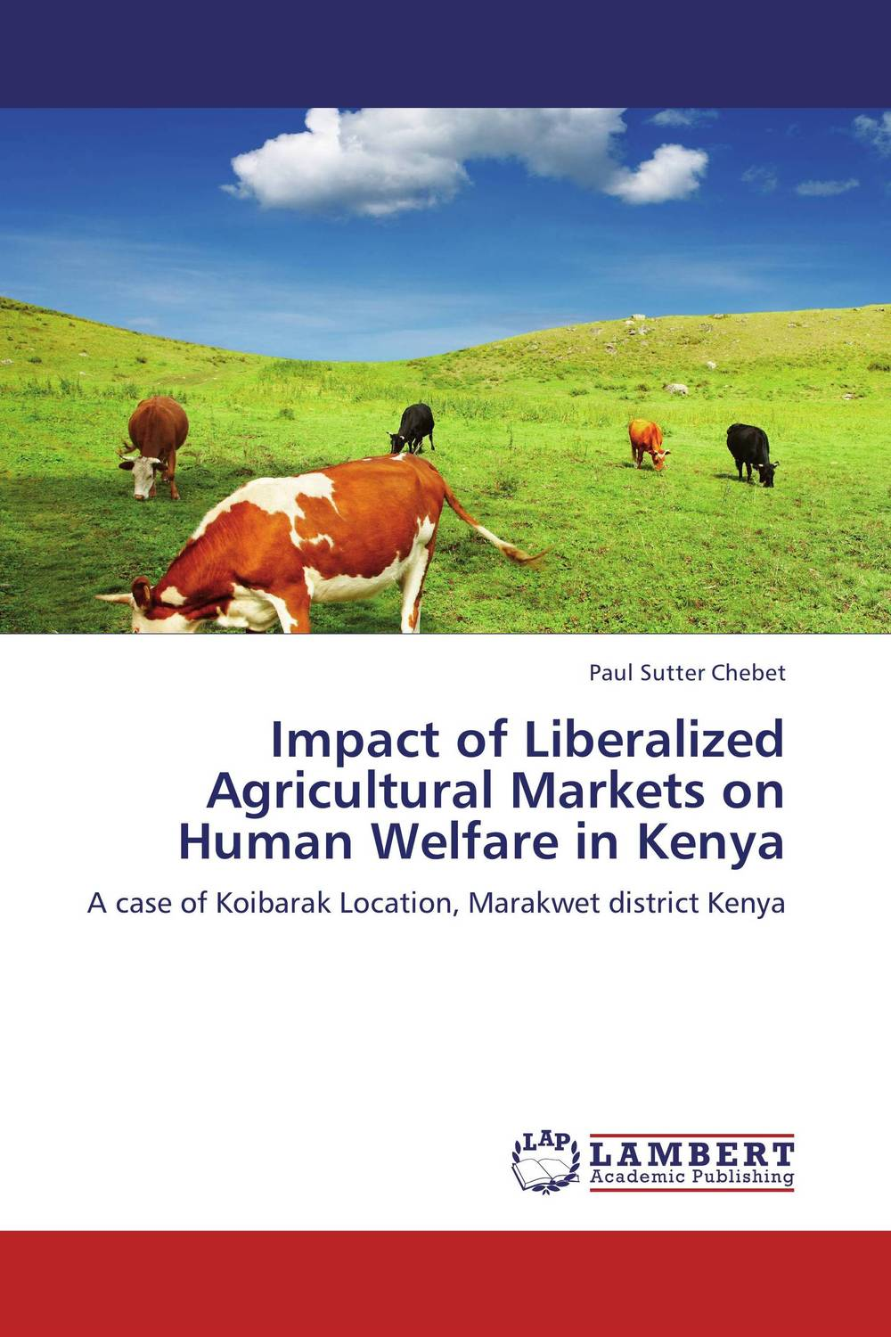 Impact of Liberalized Agricultural Markets on Human Welfare in Kenya sikhulumile sinyolo smallholder irrigation water security and rural household welfare