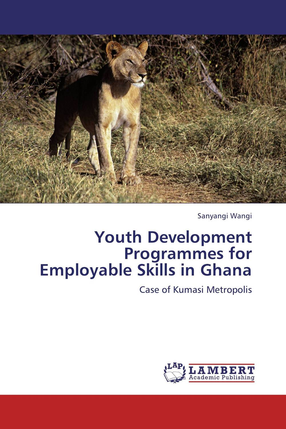 Youth Development Programmes for Employable Skills in Ghana elaine biech training and development for dummies