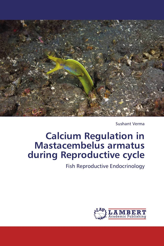 Calcium Regulation in Mastacembelus armatus during Reproductive cycle vitamin d effect on calcium homeostasis in preeclampsia