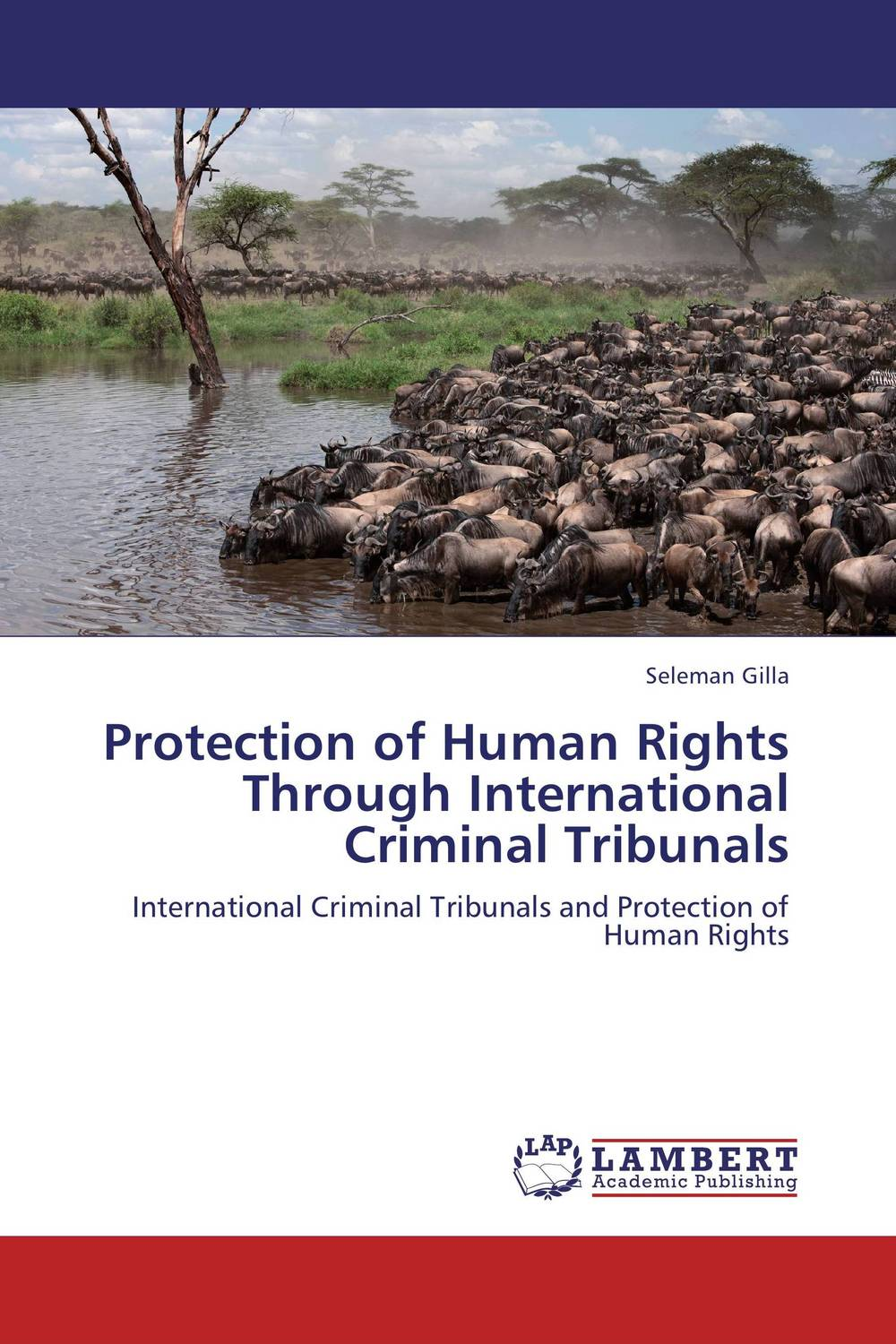Protection of Human Rights Through International Criminal Tribunals esmael ali baye enforcement of human rights through african recs comparative analysis