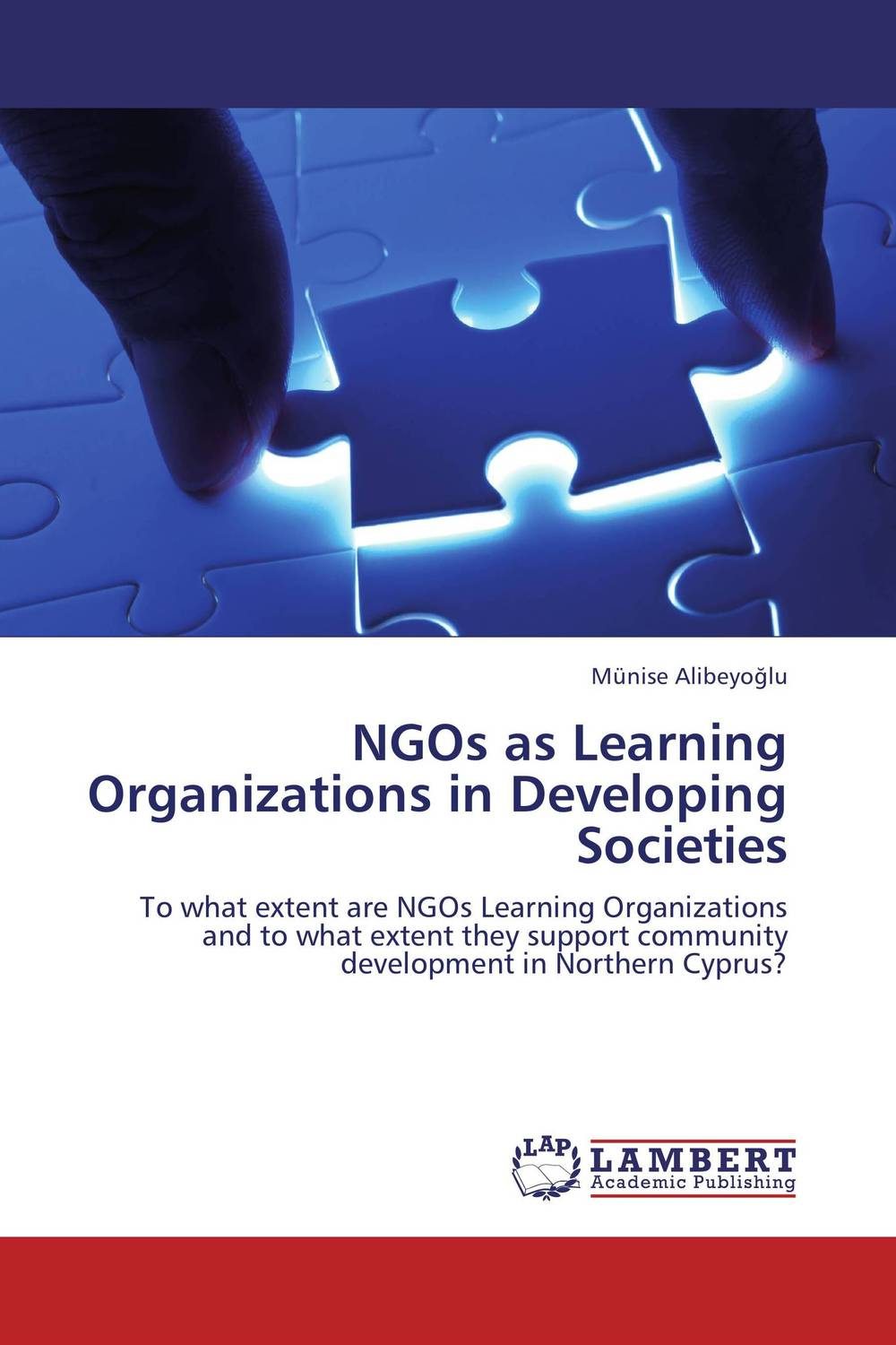 NGOs as Learning Organizations in Developing Societies the challenges experienced by non governmental organisations