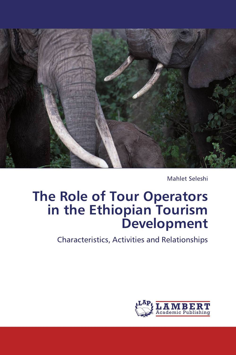 The Role of Tour Operators in the Ethiopian Tourism Development small firms in tourism