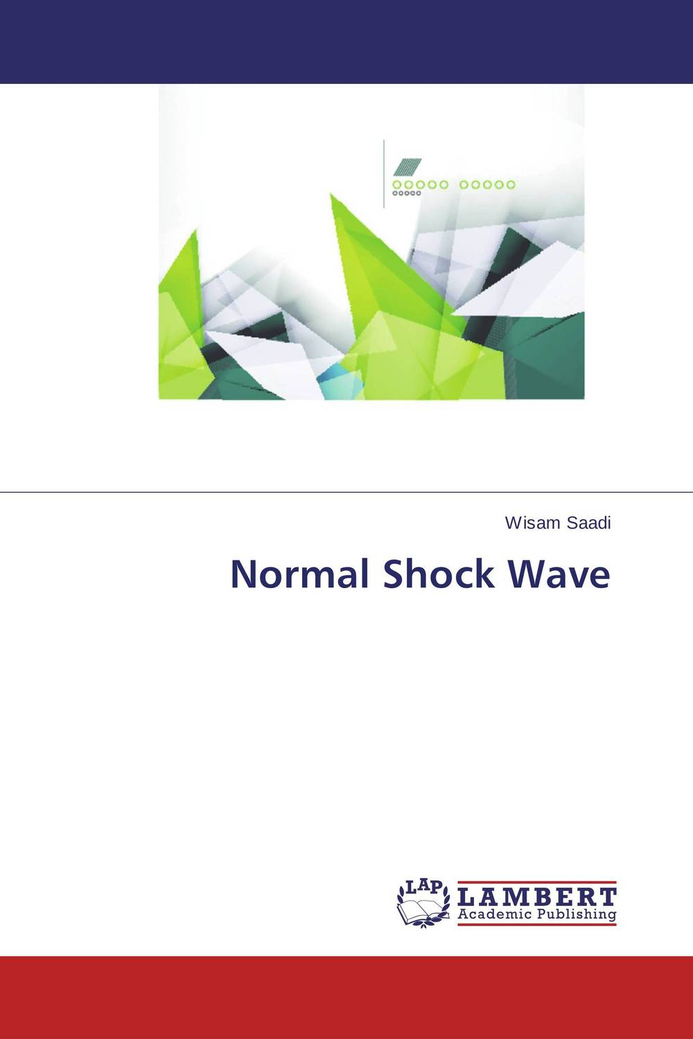 Normal Shock Wave analytical and numerical approximation solution of bio heat equation