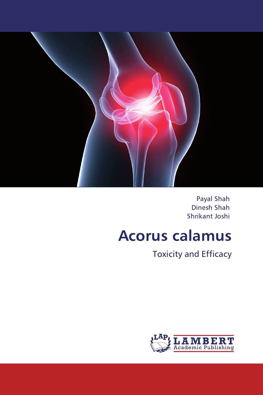 Acorus calamus antimicrobial properties of acorus calamus