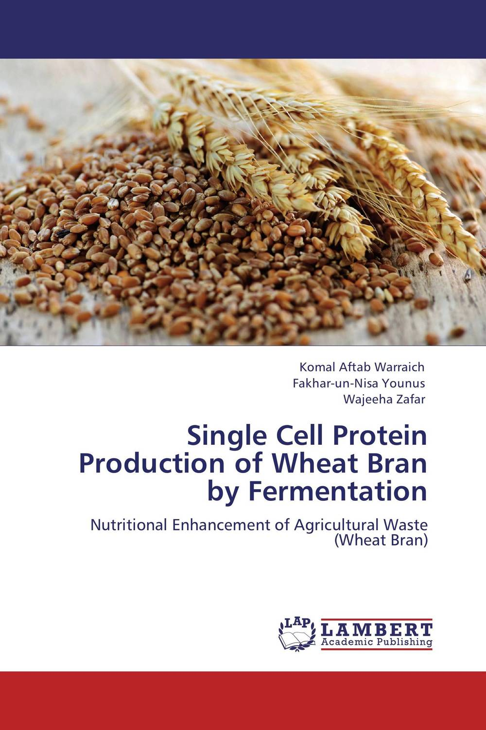 Single Cell Protein Production of Wheat Bran by Fermentation mastering fermentation