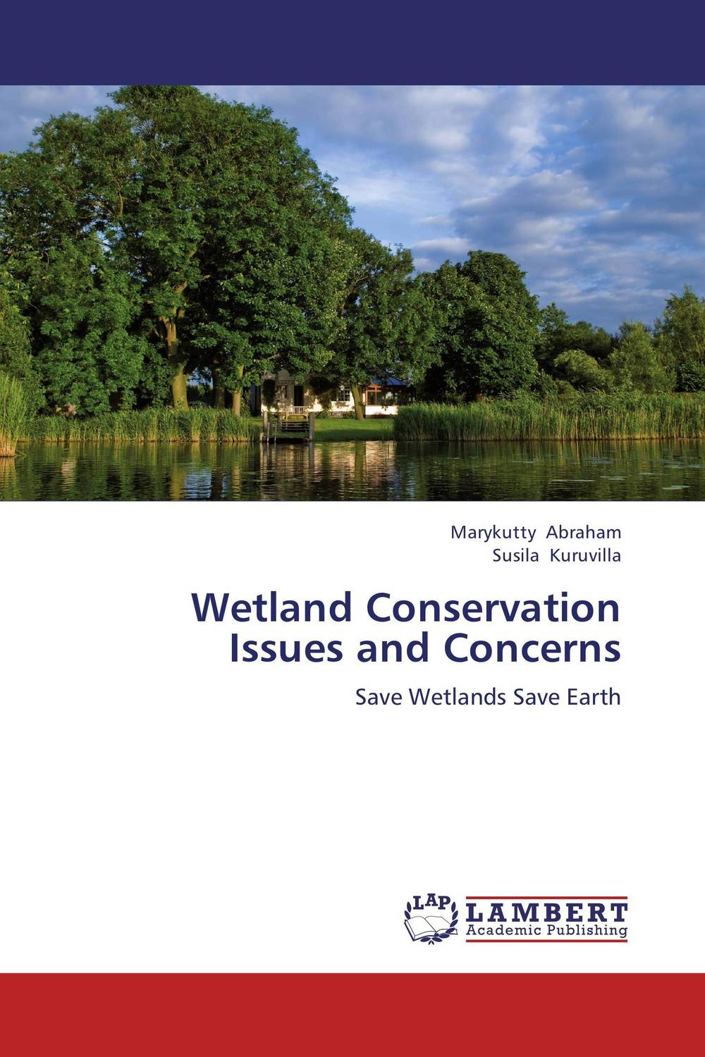 Wetland Conservation Issues and Concerns