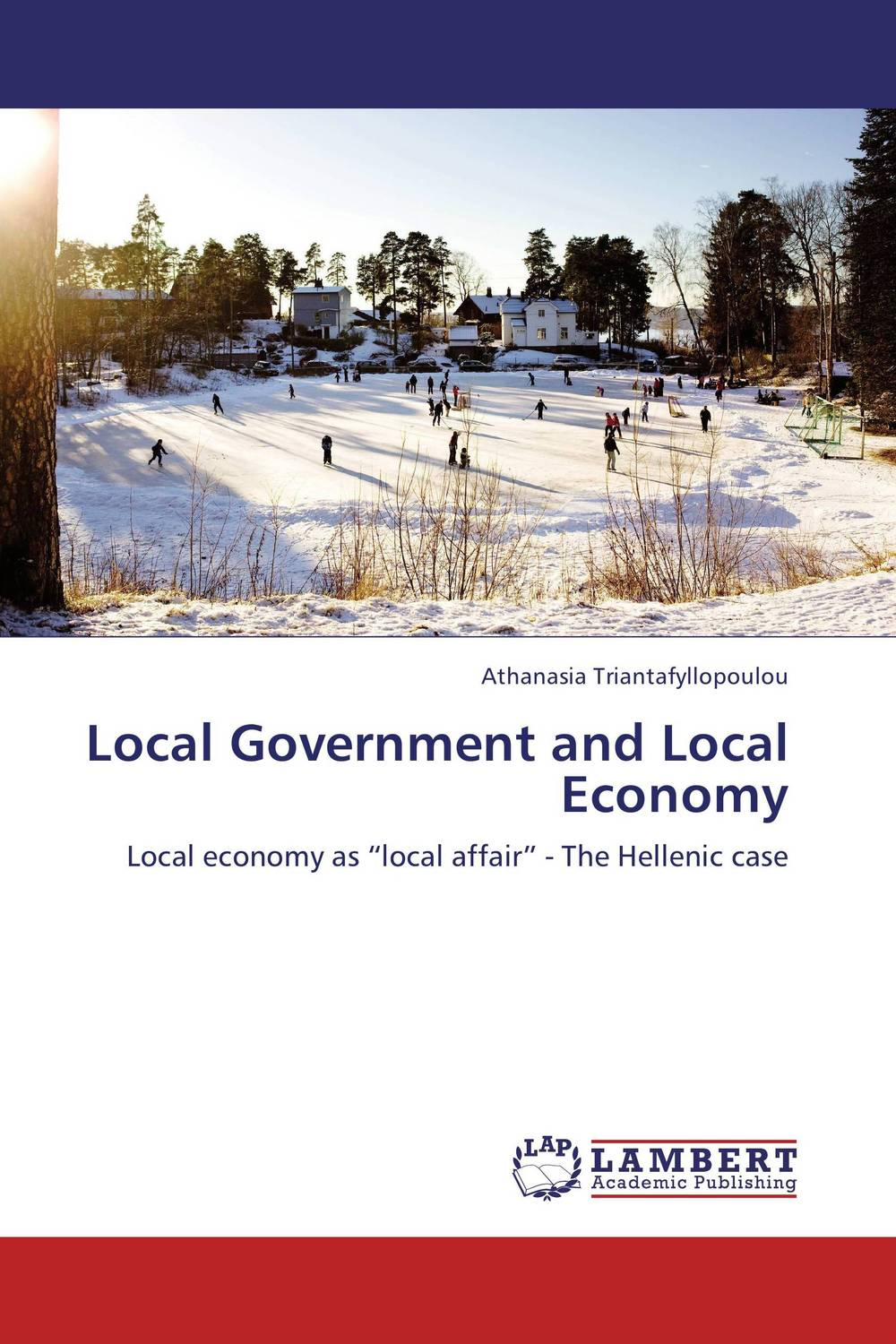 Local Government and Local Economy купить
