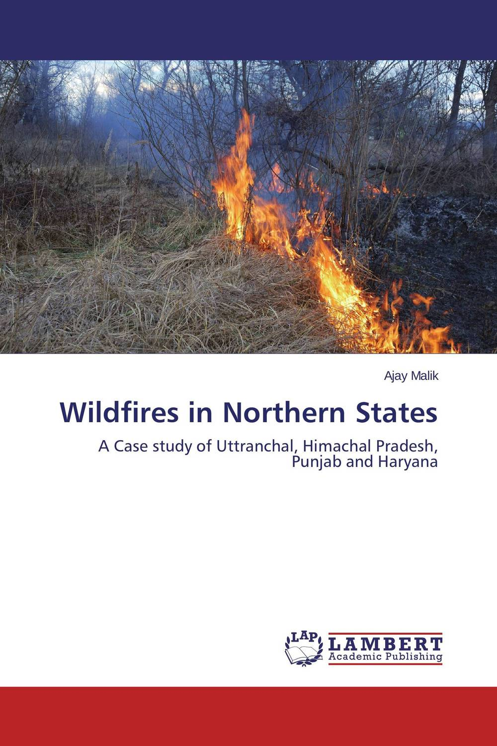 Wildfires in Northern States холст 60x90 printio trump in the fire of women