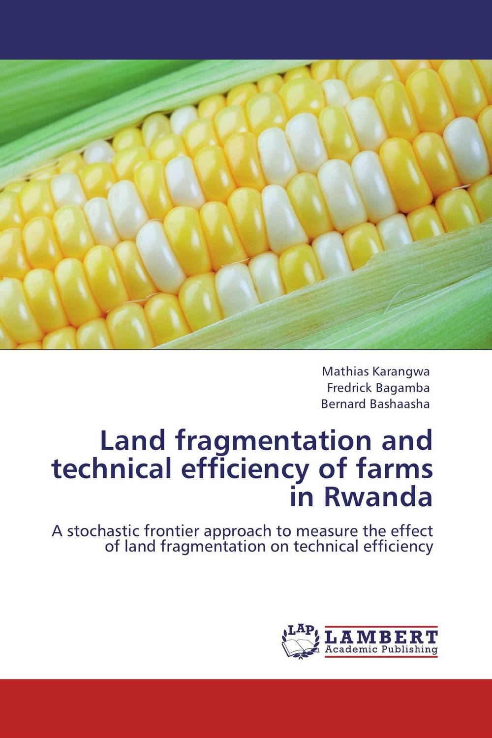 Land fragmentation and technical efficiency of farms in Rwanda this loving land