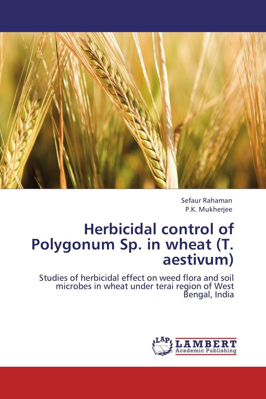Herbicidal control of Polygonum Sp. in wheat (T. aestivum) chemical weed control in wheat triticum aestivum l