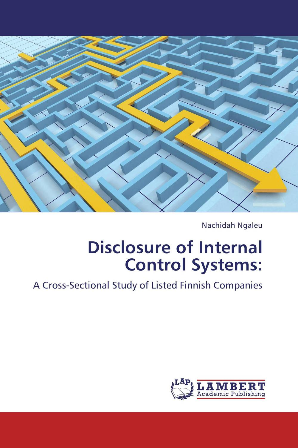 Disclosure of Internal Control Systems: evaluation of the internal control practices
