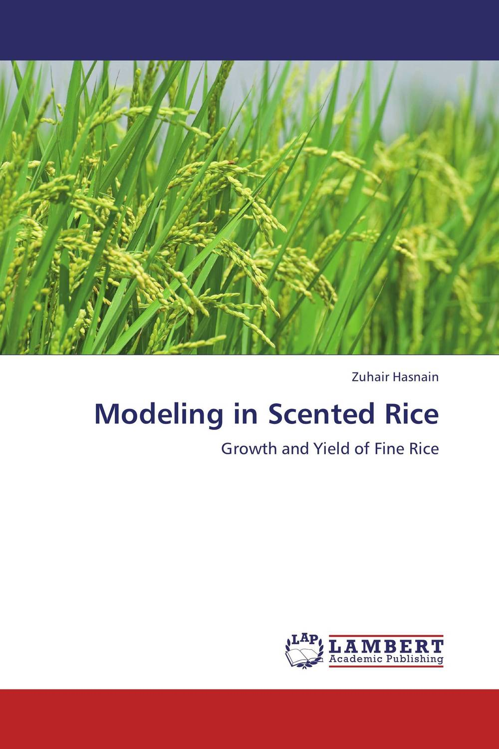Modeling in Scented Rice natural enemy fauna in rice wheat system of india