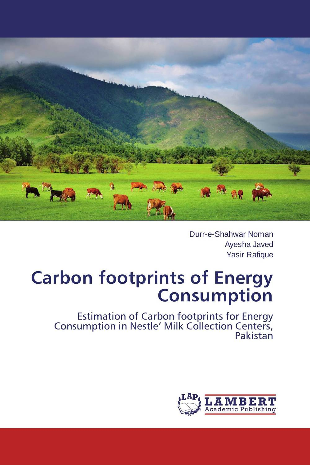 Carbon footprints of Energy Consumption lacalle daniel the energy world is flat