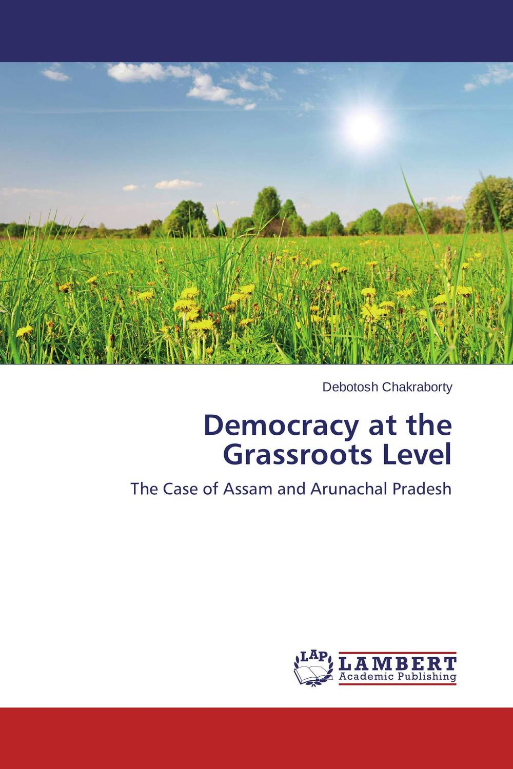Democracy at the Grassroots Level democracy in america nce