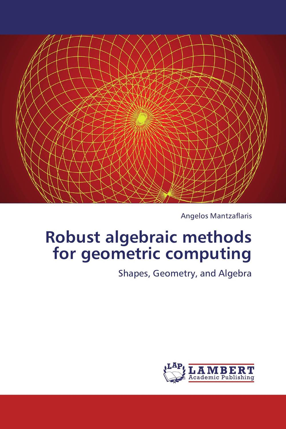 Robust algebraic methods for geometric computing
