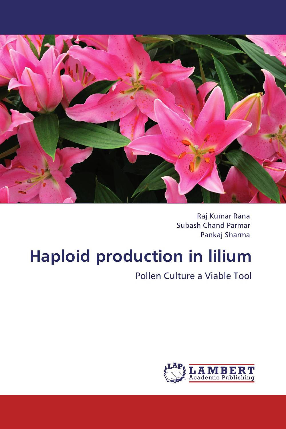Haploid production in lilium adding value to the citrus pulp by enzyme biotechnology production